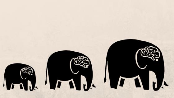 evolution-postgres