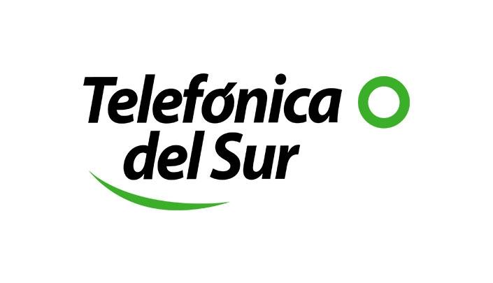 Telefonica Del Sur Case Study