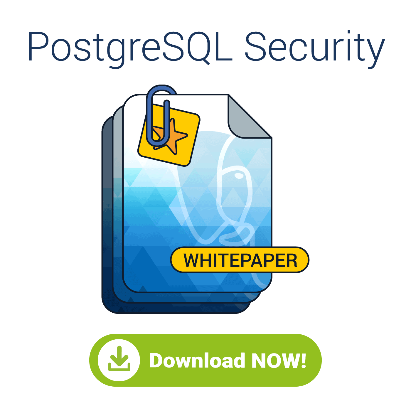 Learn how to harden your database cluster using the industry best practices presented in this PostgreSQL security whitepaper.